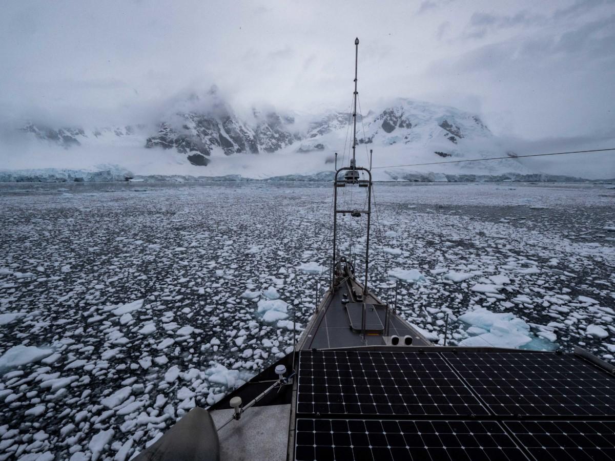 Expedition Motor Vessel Grey Wolf ini Antarctica